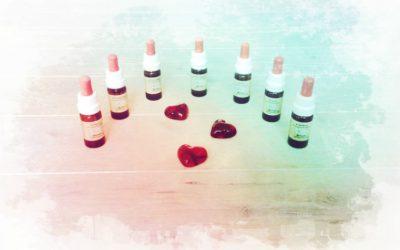 Bachblüten für deinen Herzensweg – Teil 3: Dir erlauben, den Weg deines Herzens zu wählen