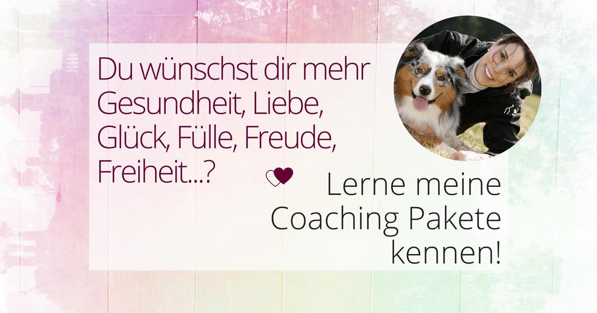 Coaching Pakete