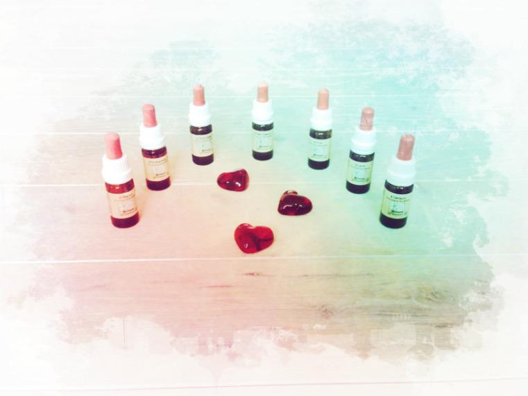 Bachblüten für deinen Herzensweg – Teil 3 von 5: Dir erlauben den Weg deines Herzens zu wählen